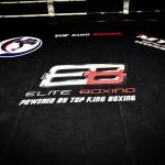 Elite Boxing 2