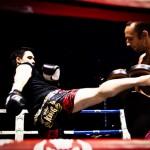 Elite Boxing 6