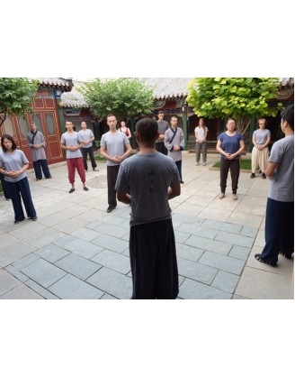 3 Months Traditional Kung Fu Training in Beijing, China