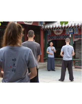 3 месяца традиционного Кунгфу | Академия Wugulun Шаолинь Кунгфу - Пекин, Китай