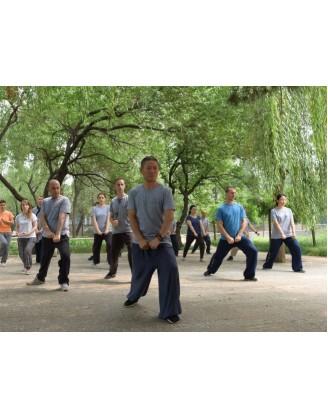 6 месяцев настоящего китайского Кунг Фу | Академия Wugulun Шаолинь Кунгфу - Пекин, Китай