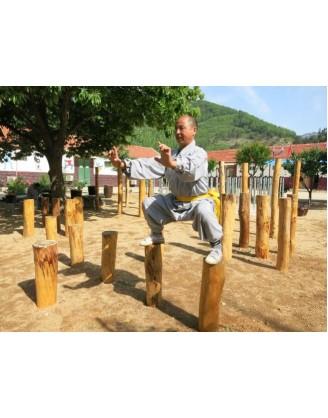 3 года аутентичного китайского Кунгфу| Академия Tianmeng - Шаньдун, Китай