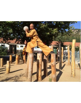 7 Months Mei Hua Poles, Shaolin Kung Fu Training, China