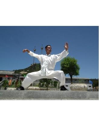 5 лет глубокого овладения техниками Кунг-фу | Акдемия Shengjing Shan - Шаньдун, Китай