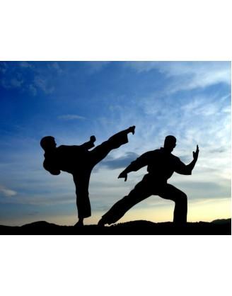 Неделя подготовки треннеров по Тайчи | Taichi Holidays - Халкида, Греция