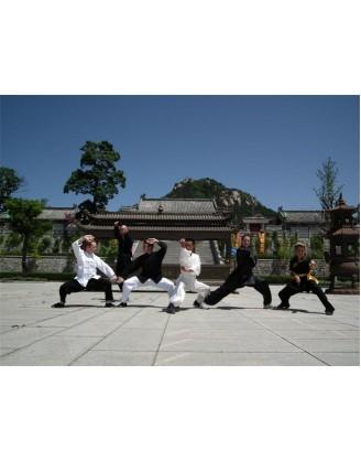 4 года изучения воинсикх искуств и Кунгфу | Акдемия Shengjing Shan - Шаньдун, Китай