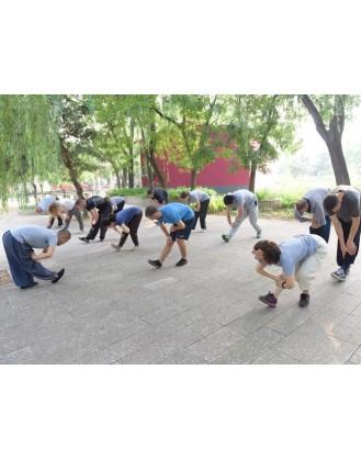 3 года занятий Кунг Фу | Академия Wugulun Шаолинь Кунгфу - Пекин, Китай