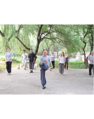 3 Years Kung Fu Trainer Training in Beijing, China
