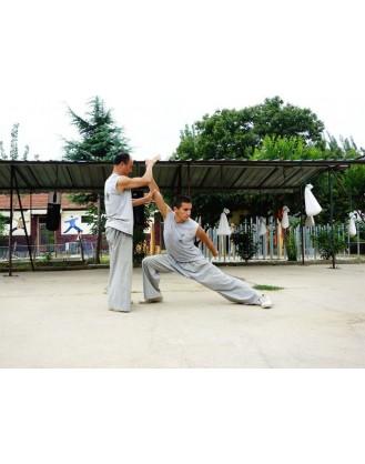 9 месяцев занятий Кунгфу и Бацзицюань | Академия Tianmeng - Шаньдун, Китай
