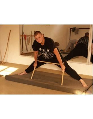 6 месяцев практики Цигун и Кунг фу | Академия Tianmeng - Шаньдун, Китай