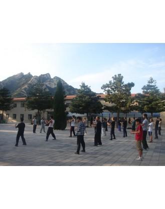5 лет тренировок Тай-Чи, Вин Чун и Кунг-фу | Академия Kunyu - Яньтай, Китай