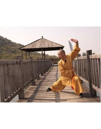 5 месяцев практики Кунгфу с монахами | Академия Tianmeng - Шаньдун, Китай