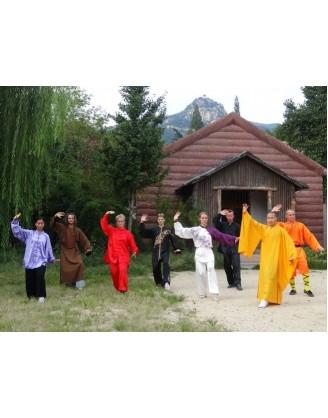 6 месяцев тренировок Кунгфу и Ушу | Суншань Шаолинь Ушу Академия - Хэнань, Китай