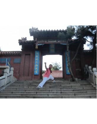 Год китайского Шаолинь-Кунг-Фу   Северный Шаолинь Монастырь - Ханьдань, Хэбэй, Китай