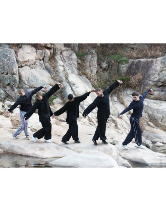 4 Years Advance Tai Chi & Kung Fu in Yantai, Shandong
