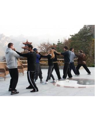 3 месяца Кунг-фу, Цигун и Тай-чи | Академия Kunyu - Яньтай, Китай