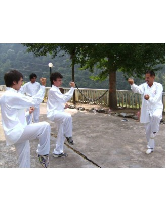2 Weeks Tai Chi, Qi Gong, and Kung Fu Vacation in China