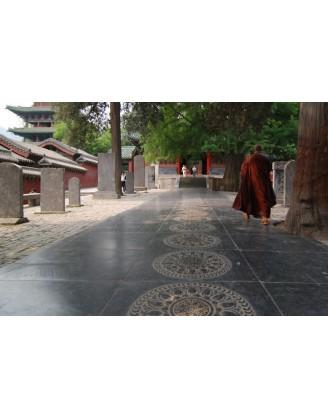 Неделя занятий Кунг-Фу в шаолиньском манастыре | CK Martial Hearts - Гуанчжоу, Китай