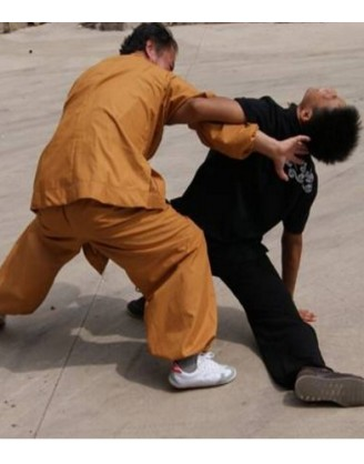 1 Year Genuine Martial Arts Training in Shandong, China