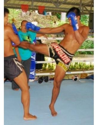 Месяц тренировок Muay Thai  | Patong GYM - Пхукет, Таиланд