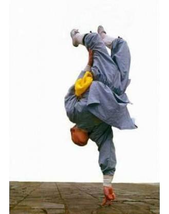 Год интенсивных и продвинутых тренировок Кунг-Фу | Qufu Shaolin School - Шаньдун, Китай