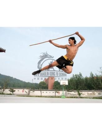 6 осваивания навыков Kung Fu и Tai Chi | Qufu Shaolin School - Шаньдун, Китай