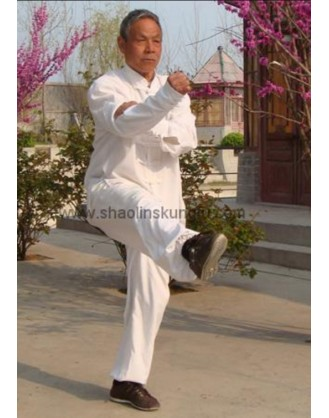 9 месяцев практики шаолиньского Кунгфу   Qufu Shaolin School - Шаньдун, Китай