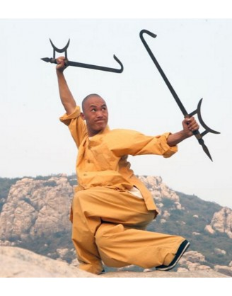 1 Year Shaolin Kung Fu Instructor Trainee in China
