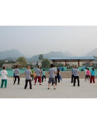 2 года интенсивных тренировок Кунг Фу | Академия Wugulun Шаолинь Кунгфу - Пекин, Китай