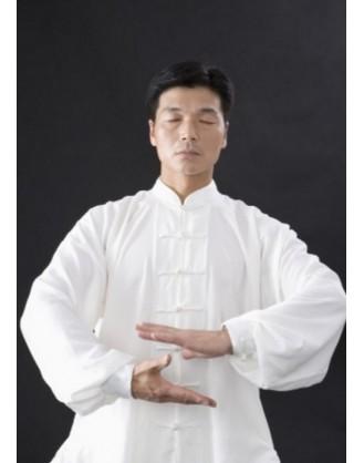 Год изучения традиционного Кунг Фу | Акдемия Shengjing Shan - Шаньдун, Китай