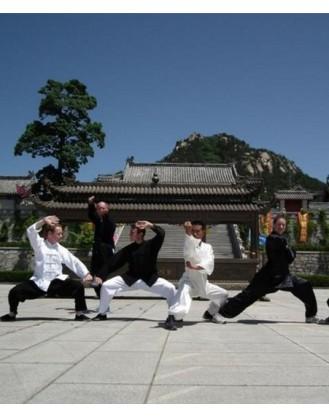 3 месяца тренировок Кунг-фу | Акдемия Shengjing Shan - Шаньдун, Китай