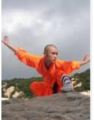 6 продвинутых тренировок Кунг-фу | Акдемия Shengjing Shan - Шаньдун, Китай
