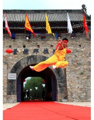 2 года занятий китайским Кунг Фу   Академия боевых искусств Siping - Цзилинь, Китай