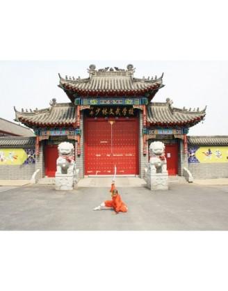 3 Months Tai Chi & Shaolin Kung Fu Training in China