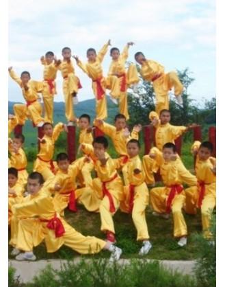6 месяцев практики Цигун, Вин-чун и Кунг-фу   Академия боевых искусств Siping - Цзилинь, Китай