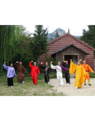 3 Years Learn Tai Chi and Kung Fu in China