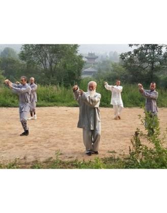4 года практики Цигун, Тай-Чи, Кунг-фу | Суншань Шаолинь Ушу Академия - Хэнань, Китай