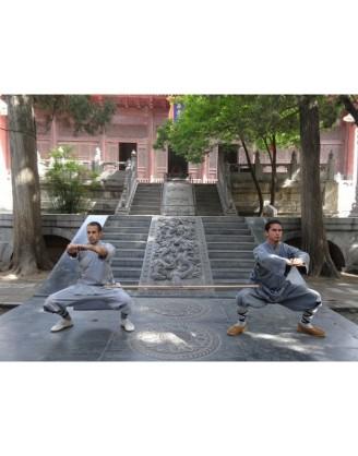 5 лет изучения шаолиньских боевых искусств | Суншань Шаолинь Ушу Академия - Хэнань, Китай
