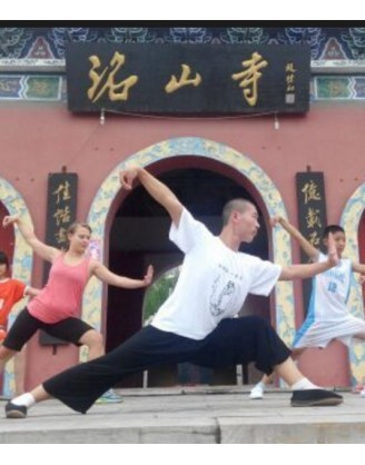 9 Months Taiji, Sanda, & Qigong Training in China