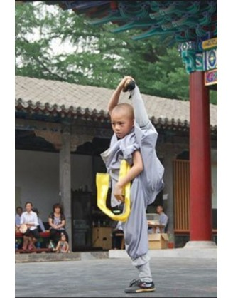2 Months Kung Fu Training in Handan, China