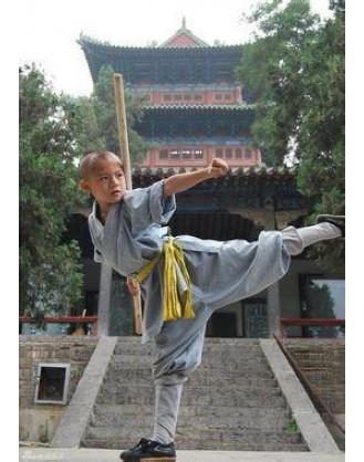 2 года Кунг Фу и изучения китайской культуры | Горный шаолиньский монастырь Тайзу - Хэбэй, Китай