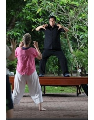 1 Week Tai Chi Training in Thailand Tao Garden Health Resort and Spa