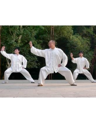 Месяц изучения Тайчи | Школа Ван Чжи Пина - Гуанси Гуйлинь, Китай