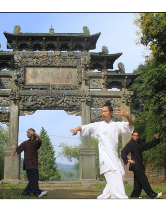 1 Month Wudang Qigong, Taiji, and China Kungfu Training