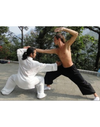 1 Month Basic Kung Fu Training in Shiyan, China