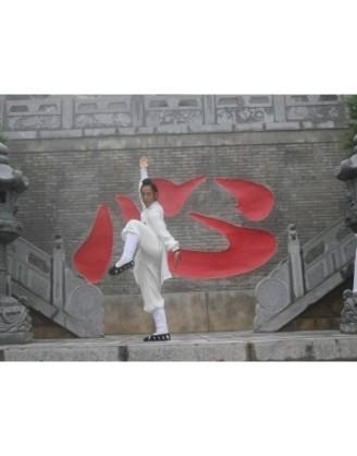 14 дней практики Удан Кун Фу | Академия Удан Саньфэн - Хубэй, Китай