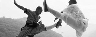 боевые искусства по всему миру