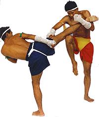 старая традиция тайского бокса