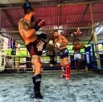 tayskiy-boks-samui-klub-03