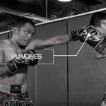 Muay Mat стили тайского бокса